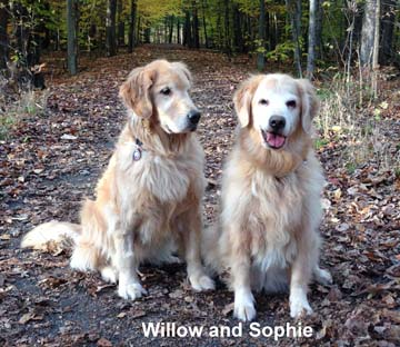 Willow and Sophie